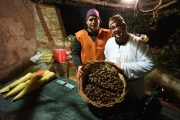 Presepe vivente: le caldarroste