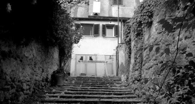 Su Cesano Borgo