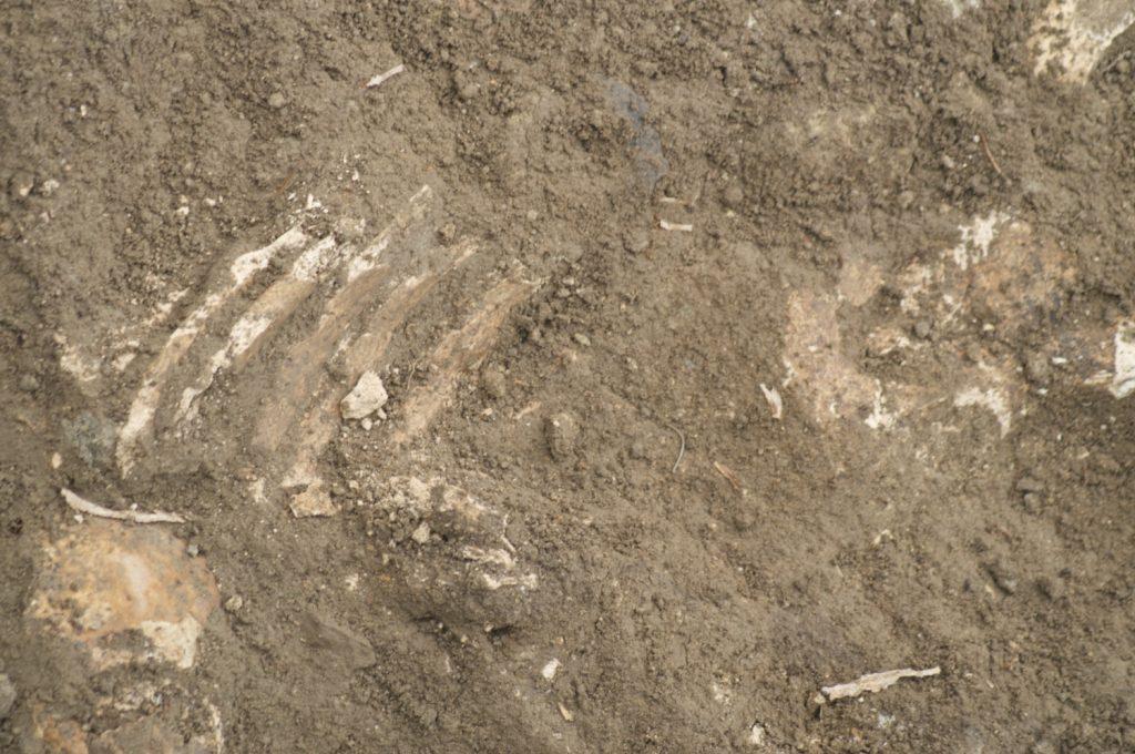 Scavi archeologici davanti a San Nicola