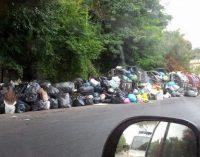 Rifiuti, Torquati: Situazione insostenibile, chiedo intervento Marino