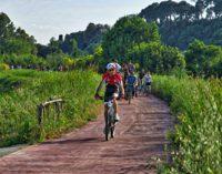 Bonifica ciclabile Ponte Milvio – Castel Giubileo