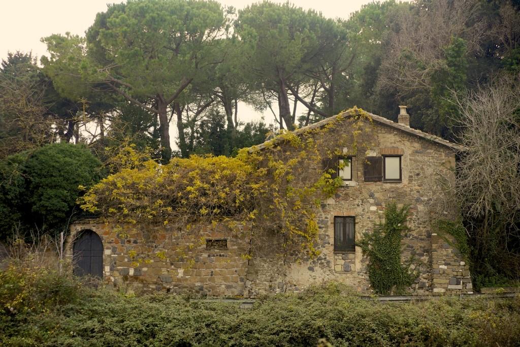 Borgo La Merluzza