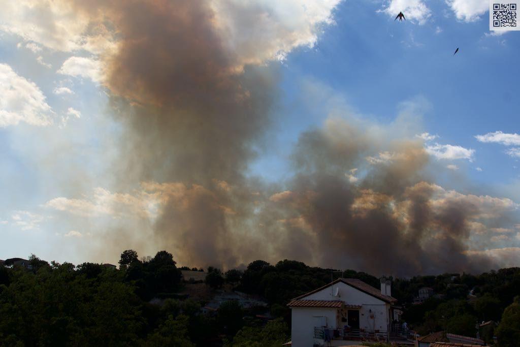 Scappano le rondini dall'incendio ai Monti di Sant'Andrea