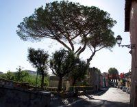 Scempio all'antico Borgo di Cesano