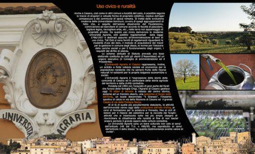 X. L' Università Agraria di Cesano: uso civico e ruralità