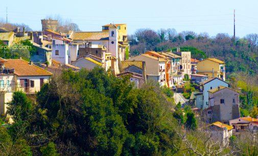 La Via Francigena a Cesano