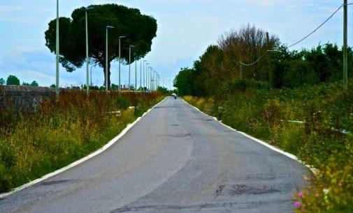 Il territorio di Cesano