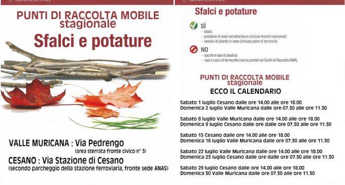 L'AMA a Cesano per le potature e gli sfalci