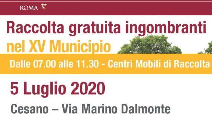 Raccolta ingombranti a Cesano: domenica 5 Luglio